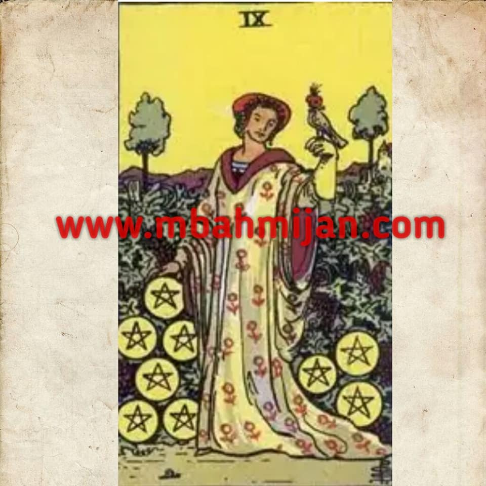 kartu tarot nine of pentacles