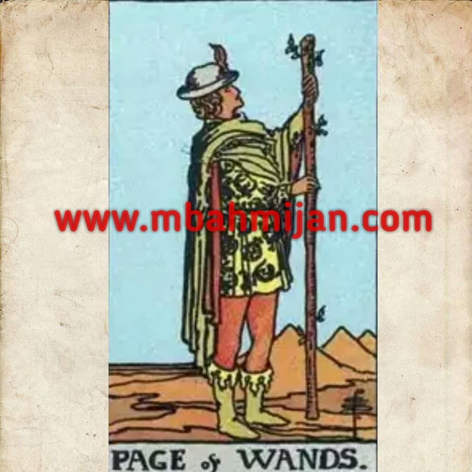 kartu tarot page of wands