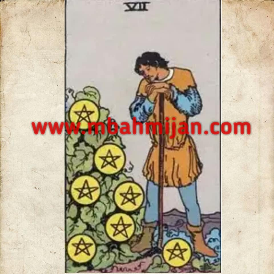 kartu tarot seven of pentacles