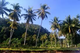 Alamat Dukun Kabupaten Barru