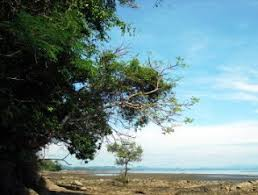Alamat Dukun Kabupaten Sinjai