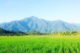 Alamat Dukun Kabupaten Tolitoli