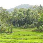 Alamat Dukun Kabupaten Garut